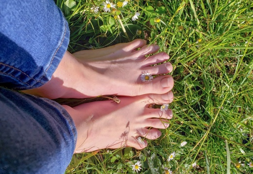 Feet porn First time ing   just wanted to share how much my feet are loving these summer days  -id2t8vo1to231