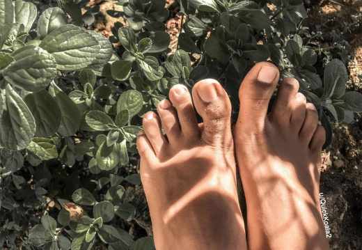 Foot porn I m into gardening lately  What do you like -7ru4nmqahi431